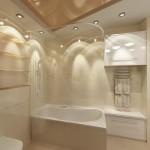 Дизайн сан. узла в 3-х комнатной квартире