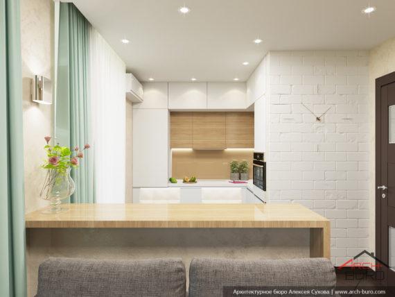 1-комнатная квартира-студия в Москве. Дизайн кухни